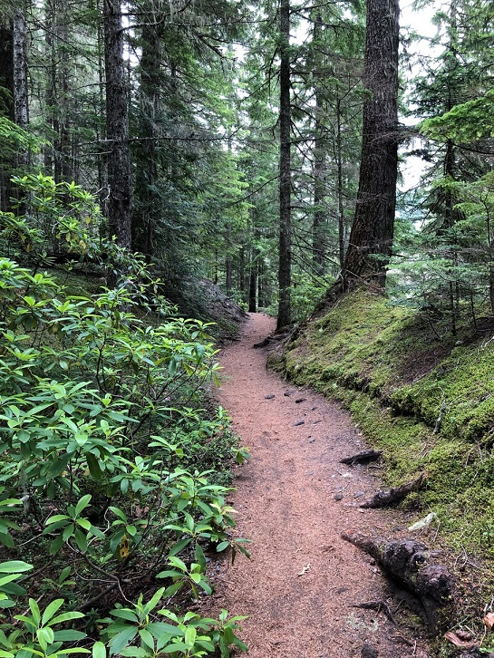 Ramona Trail 5
