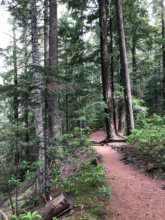Ramona Trail 6