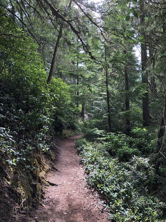 Ramona Trail 3