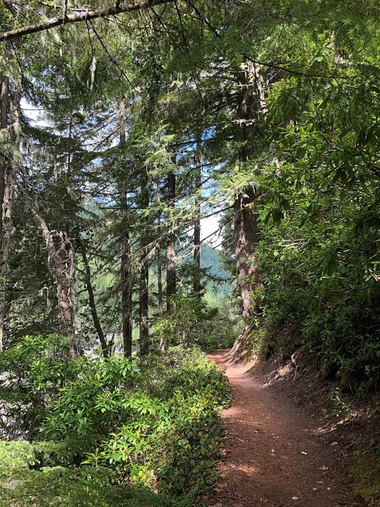 Ramona Trail 4