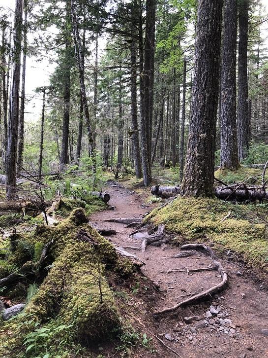Ramona Trail 1